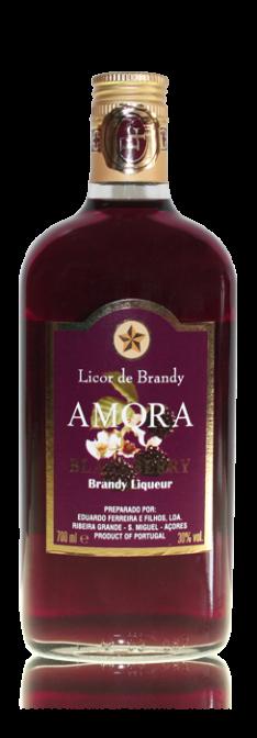18_brandy_amora_ez_2